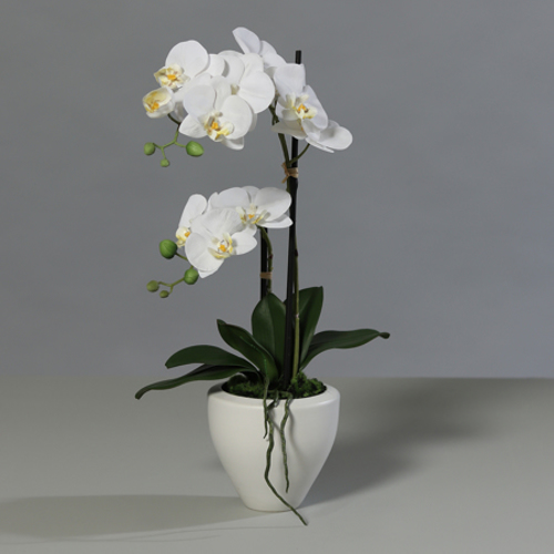 Orhidee artificiala alba in ghiveci ceramic - 57 cm