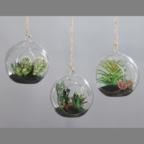 Set x3 plante suculente artificiale decorative in ghiveci de sticla - 13 cm