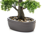 Bonsai artificial decorativ in ghiveci ceramic - 43 cm