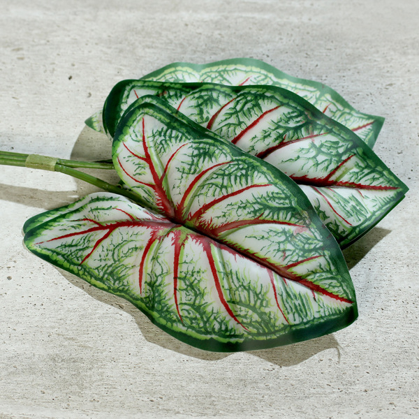Set x5 frunze artificiale Begonia verde-crem - 40 cm